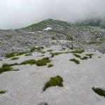 Graustockkarst Gletscherschliff. Martin Trüssel