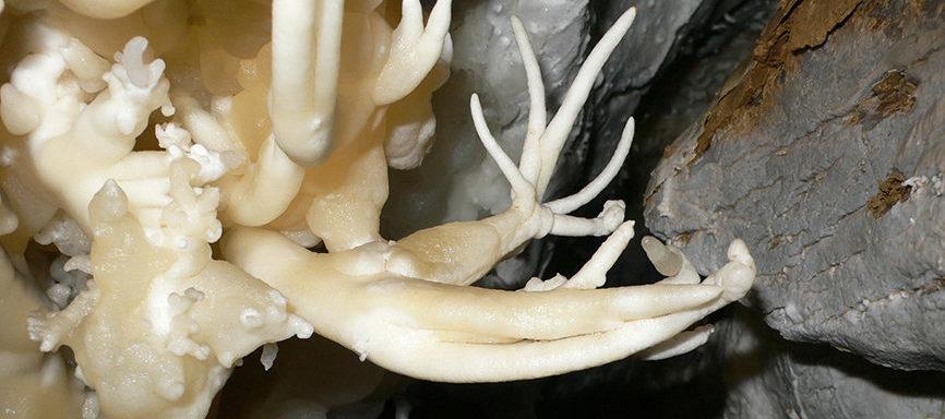 Welch faszinierende Tropfsteinformen die Höhlenwelt der Melchsee-Frutt zum Vorschein bringt!